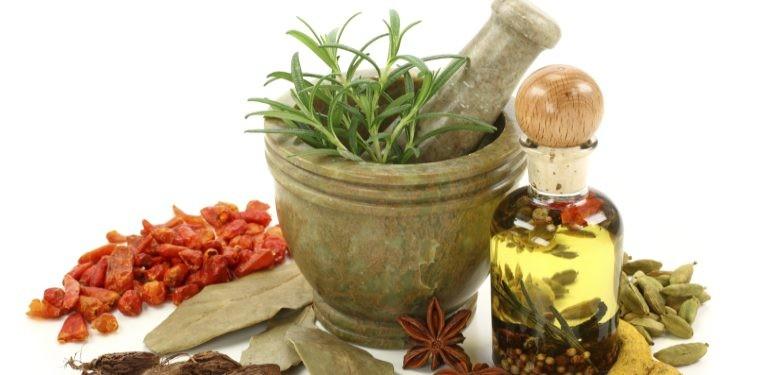 Cuida tus riñones con estas 5 plantas y remedios naturales